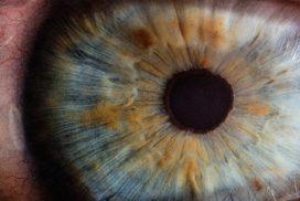 Comprehensive Dry Eye Treatment